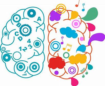 Emotional Rational Brain Behaviour Right Left Buyer