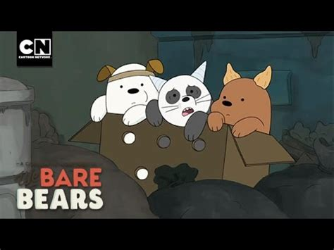 baby bears   move   bare bears  cartoon network