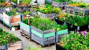 Urban gardening der garten in der stadt for Katzennetz balkon mit scout garden