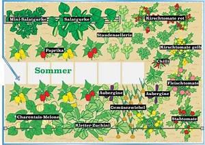 Gewächshaus Bepflanzen Plan : 10 tipps rund ums g rtnern im gew chshaus mein sch ner ~ Lizthompson.info Haus und Dekorationen
