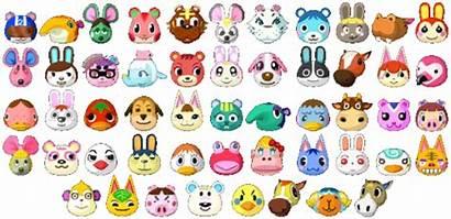 Villager Favorite Crossing Animal Types Normal Peppy