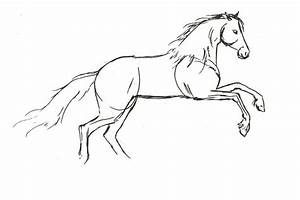 How to draw a horse (Step by step) (Easy) - YouTube
