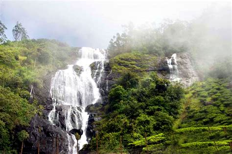 kashmir indian cuisine relish the waterfalls in munnar my india