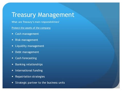 treasury management consulting services neuraltechsoft