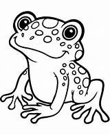 Frog Coloring Pages Exotic Printable Animals Easy Topcoloringpages Water Colouring Sheets Adult Dessin Coloriage Grenouille Preschoolers Sea Printables Animaux Printing sketch template