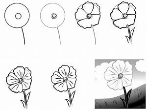 How to draw a simple flower step by step with pencil: 18 ...