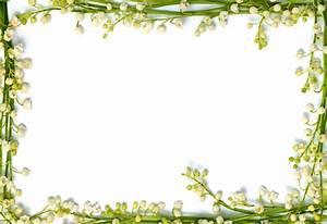 2013 Border Frame Plant | green flower frame | Pinterest ...