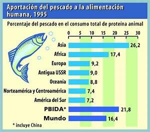 Download Composicion De La Carne De Pescado Pdf Free