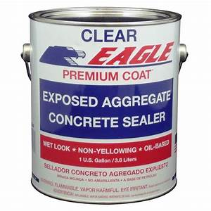 Eagle 1 gal Premium Coat Clear Wet Look Glossy Solvent