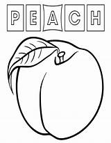 Peach Coloring Pages sketch template