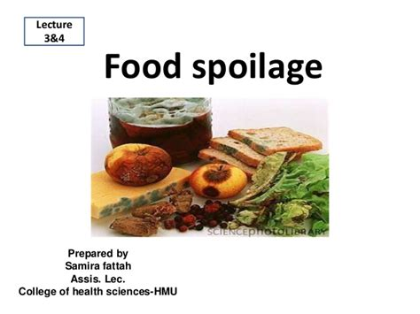 n駮n cuisine food spoilage