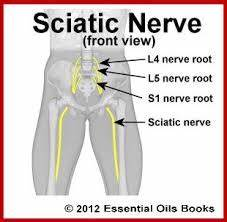 treatment for sciatic nerve pain in lower back