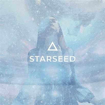 Starseed Meditation Coming Inner Rejuvenation Temple