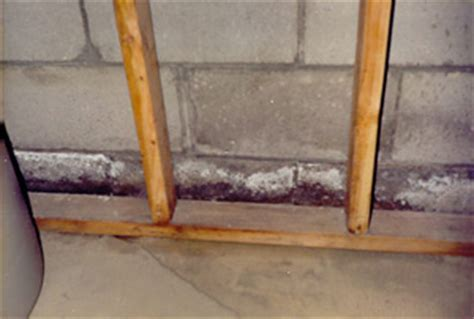 Basement Dehumidifier Usage and Efflorescence