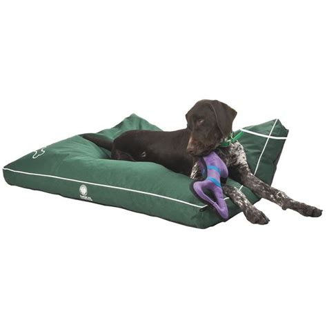akc water and chew resistant dog bed 3x40x30 quot save 37