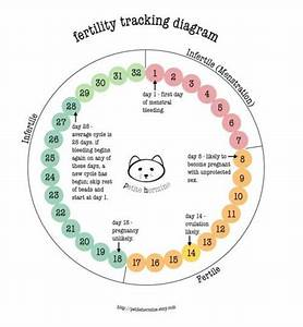 The 25  Best Fertility Chart Ideas On Pinterest