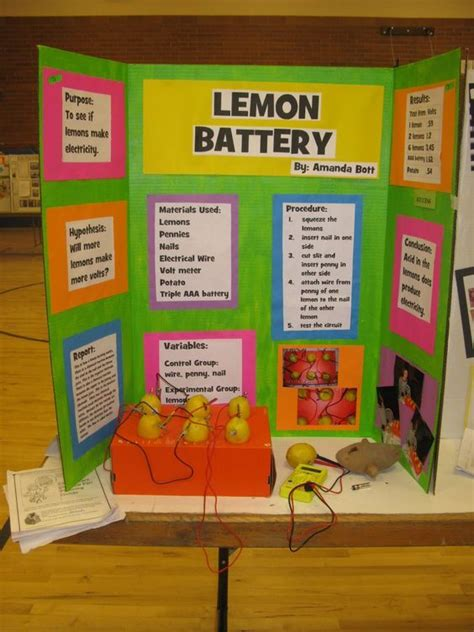 25 best ideas about science fair on pinterest school