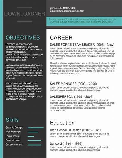 Resume Cv Editable Templates Modern Word Document