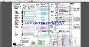 Cummins Qsl9 Wiring Diagram Manual