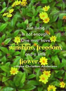 Quotes About Flowers And Little Things. QuotesGram