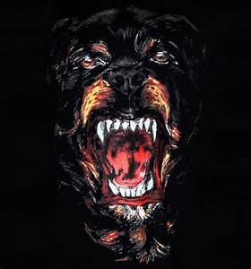 givenchy-rottweiler | Tumblr