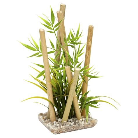 bamboo plants sydeco bamboo large plants at wilko com