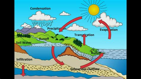 class water cycle youtube