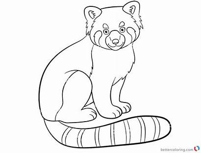 Panda Coloring Pages Printable Colouring Adults Getdrawings