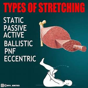 The Importance Of Stretching To Boost Muscle Recovery And
