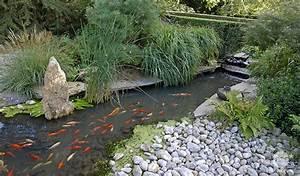 Jardin Avec Bassin : bien choisir sa filtration de bassin jardinerie truffaut conseils filtration et accessoires de ~ Melissatoandfro.com Idées de Décoration