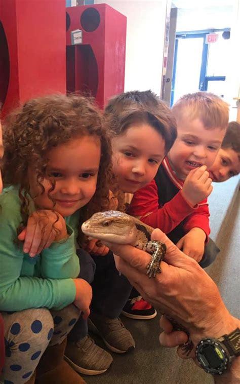 scholars preschool 996 | little scholars preschool animal exp 1