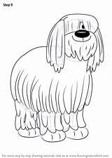 Sheepdog Pound English Puppies Draw Niblet Drawing Step Cartoon Improvements Necessary Finish sketch template