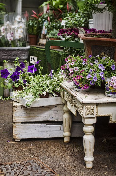 shabby chic shop shabby chic flower shop photograph by heather applegate