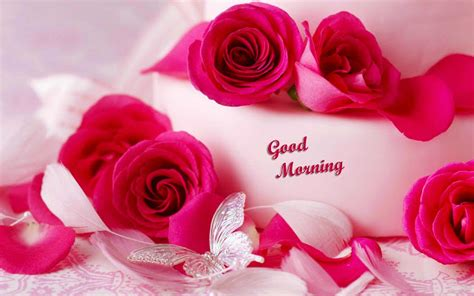 beautiful good morning images  flowers