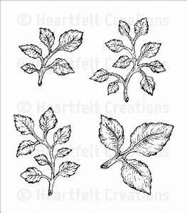 Click To Enlarge  Open Leaf Cling Stamp Set