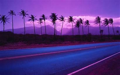 Purple Background Backgrounds Wallpapers Trees Palm Myspace
