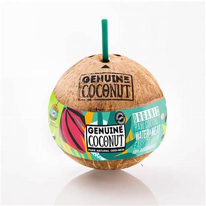 Coconut Drink Eat Genuine Trading Fruit