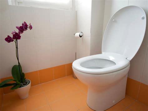 remove  replace  toilet  tos diy