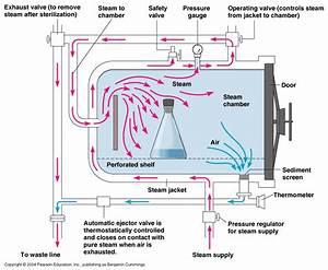 Autoclave Diagram : sterilization exploraci n de odontolog a ~ A.2002-acura-tl-radio.info Haus und Dekorationen
