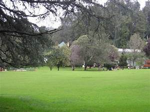 Ooty Botanical Garden Pictures