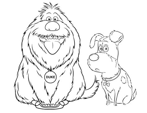 disegni  pets vita da animali da colorare