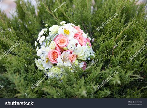 Pink And White Wedding Bouquet In Green Grass Stock Photo
