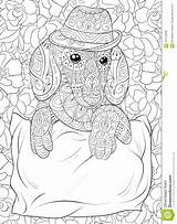 Coloring Dachshund Relaxing Zen Adult Illustration Wearing Hat Floral Background sketch template
