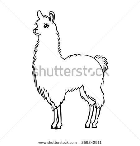 llama drawing stock illustration  shutterstock