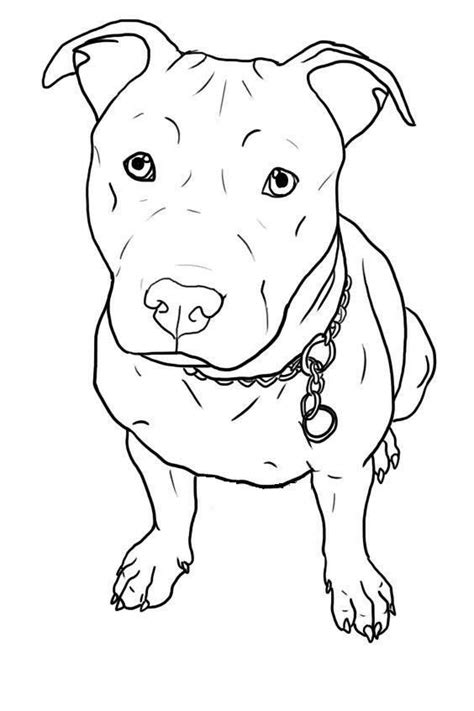 Just add my Lobo's features the black and white this tattoo would look like him. | Pitbull