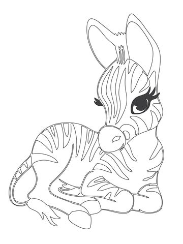 cute baby zebra coloring page supercoloringcom