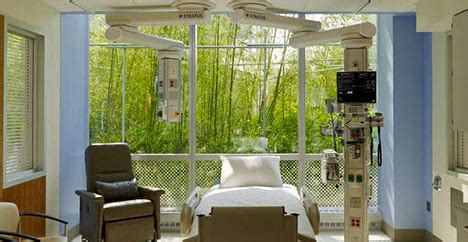 natures cure  biophilic design  enhance healing