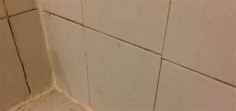grout coming   tiles     flood