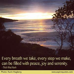PEACE AND SERENITY Quotes Like Success