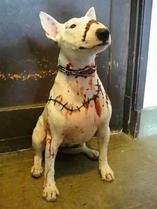 #BullTerrier Halloween costume #English #Bull #Terrier # ...